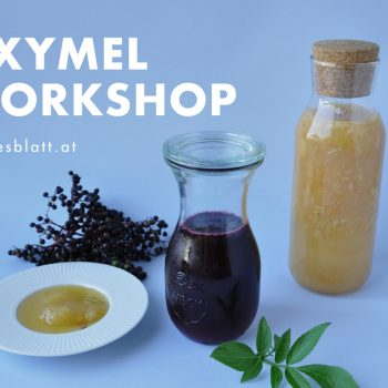 Oxymel Workshop